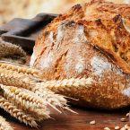 Faire son propre pain bio : quelle machine choisir ?